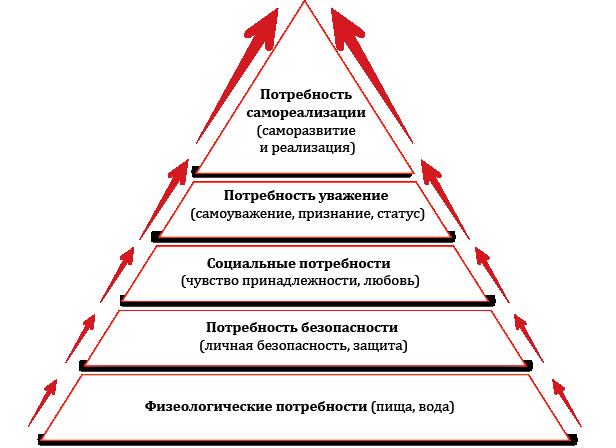 пирамида Маслоу АНО Систематика