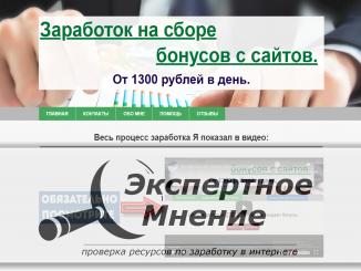 Заработок на сборе бонусов с сайтов от 1300 рублей в день