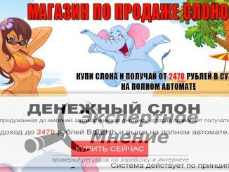 Магазин по продаже слонов. ДЕНЕЖНЫЙ СЛОН. 2470 рублей на автомате